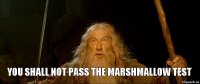 you shall not pass the Marshmallow Test