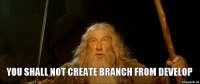 you shall not create branch from develop