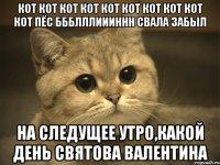 плесень мой котик котик котик песня видео Москве летняя
