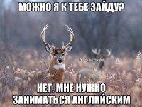 Фото пользователя александр, грахово, 46 лет