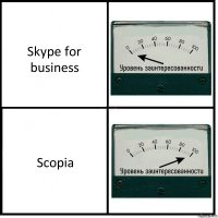 Skype for business Scopia