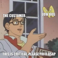 the Customer low bug This is Critical, please fix it asap