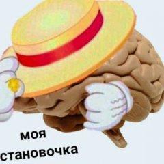 Моя остановочка мозг