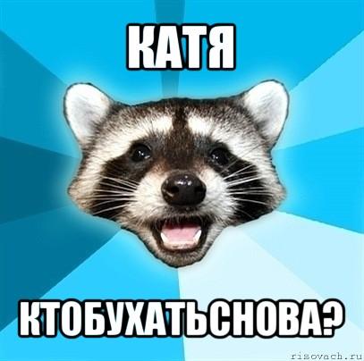 Ктобухатьснова мем енот каламбурист