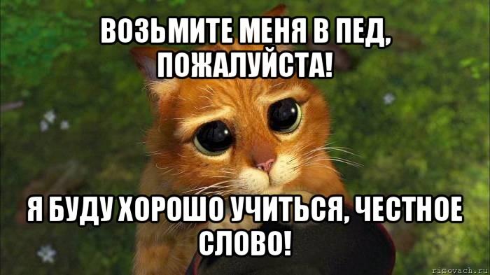 Пососи пожалуйста фото