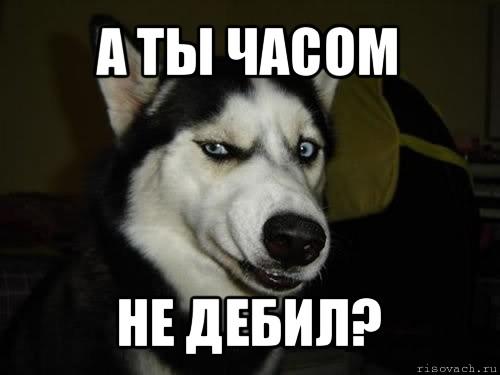Не исключено, что Мельник попытается сбежать в Россию или Беларусь, - МВД - Цензор.НЕТ 4003