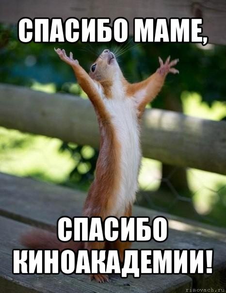 http://risovach.ru/upload/2012/08/comics_belka_orig_1345335112.jpg