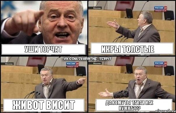 да уши: