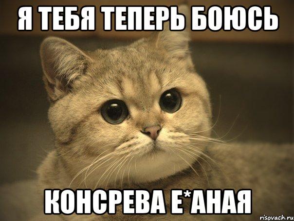 я тебя теперь боюсь консрева е*аная, Мем Пидрила ебаная котик ...