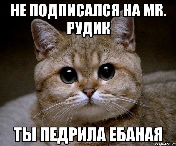 Все мемы Пидрила Ебаная - Рисовач .ру