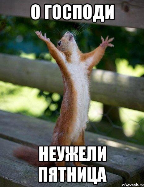 о господи неужели пятница, Мем белка молится - Рисовач .Ру