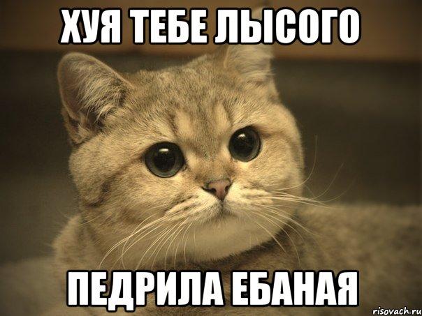 http://risovach.ru/upload/2013/01/mem/pidrila-ebanaya-kotik_8444609_orig_.jpeg