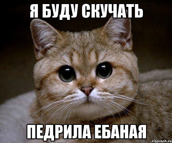 я буду скучать педрила ебаная, Мем Пидрила Ебаная - Рисовач .Ру