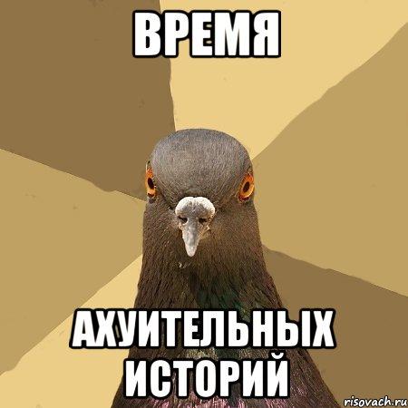 golub_11270463_orig_.jpg