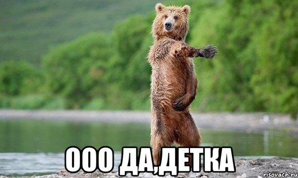 ооо да,детка, Мем Медвед танцует - Рисовач .Ру