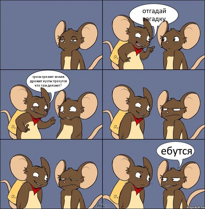 Ебутся мыши