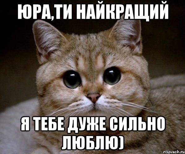 ти люблю: