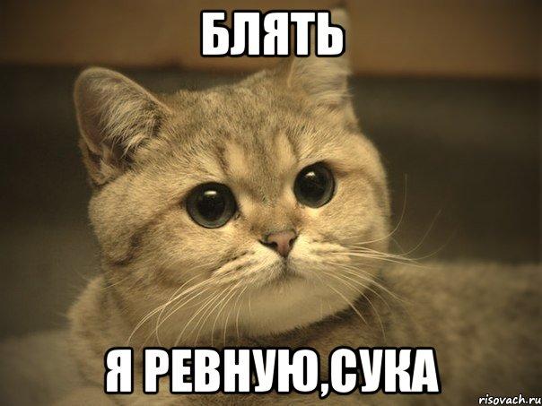 тебя ревную: