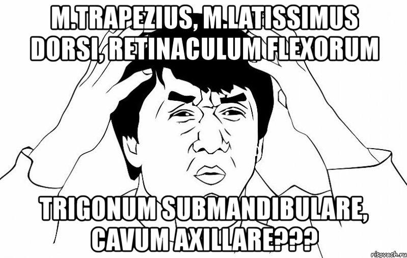Trigonum submandibulare cavum axillare мем джеки чан
