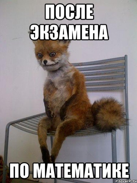 после экзамена - фото 7
