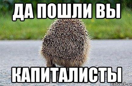 Еврокомиссар Хан призвал ускорить принятие безвиза для Украины - Цензор.НЕТ 4078