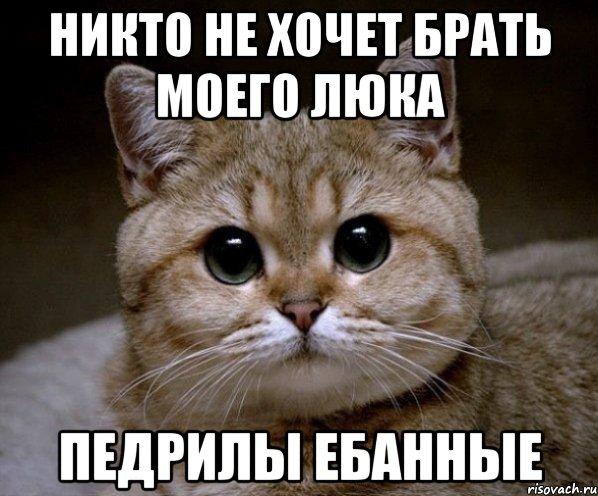 http://risovach.ru/upload/2013/05/mem/pidrila-ebanaya_17938672_orig_.jpeg