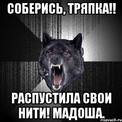Нити мадоша мем сумасшедший волк