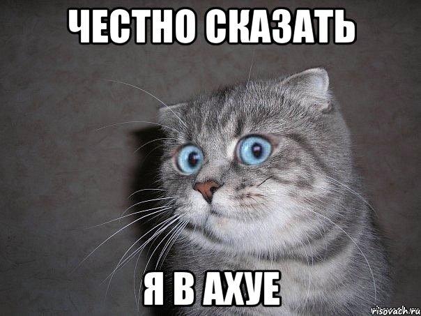 ya-v-ahue_18304221_orig_.jpeg