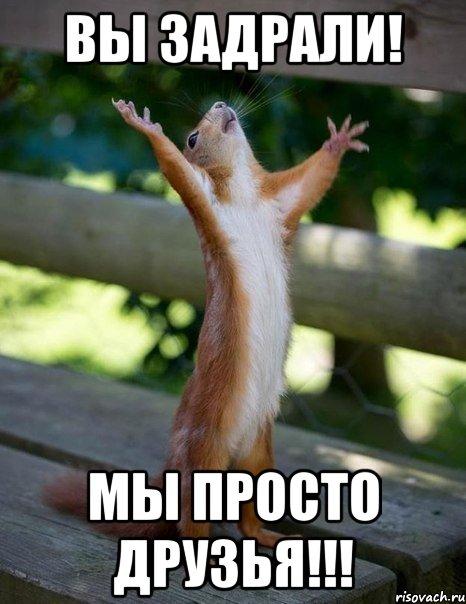 вы задрали! мы просто друзья!!!, Мем белка молится - Рисовач .Ру