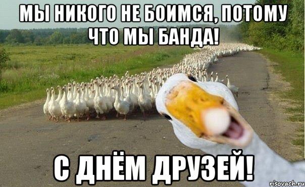 http://risovach.ru/upload/2013/06/mem/gusi_21214554_orig_.jpg