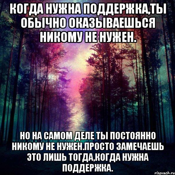 красивый, лес