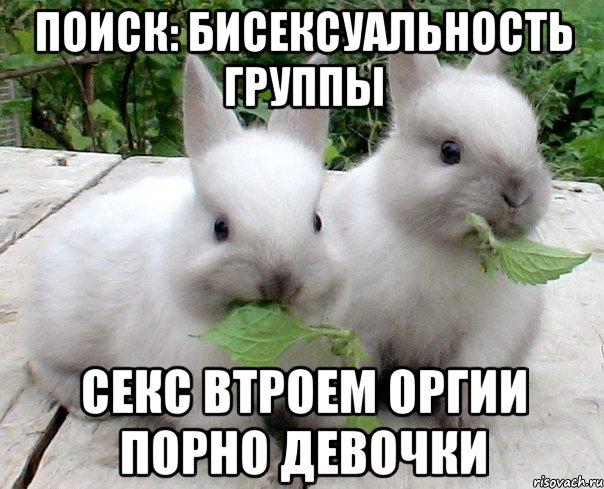 Кролик секс
