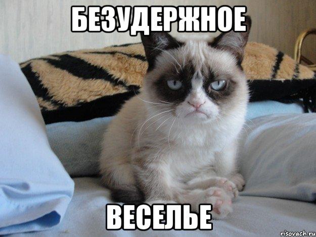 Безудержное веселье мем печальный кот