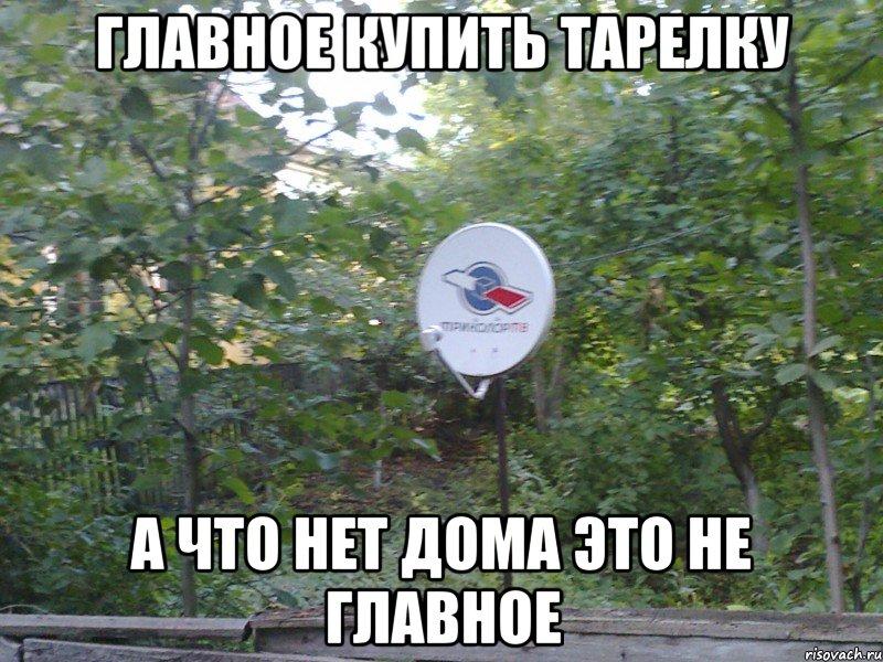 тарелка весит в лесу