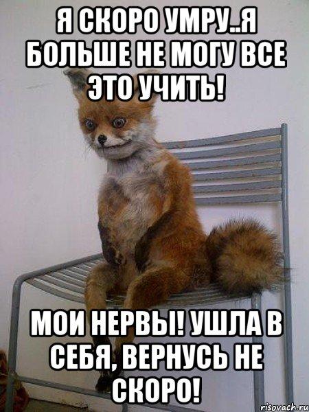 На проведенном онлайн совещании, общественной палаты россии с региональными общественными палатами на котором обсуждались проблемы безнадзорных животных в городской среде, а также вопросы