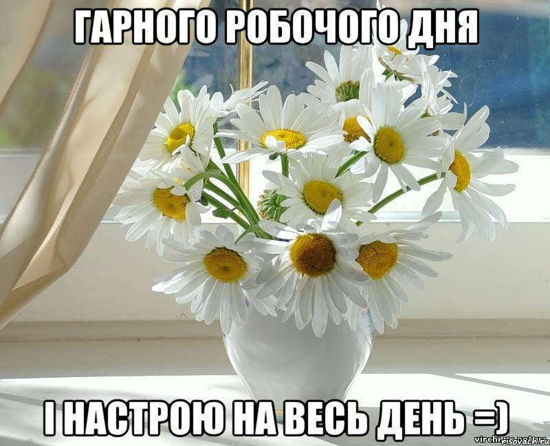 доброго ранку гарного дня картинки