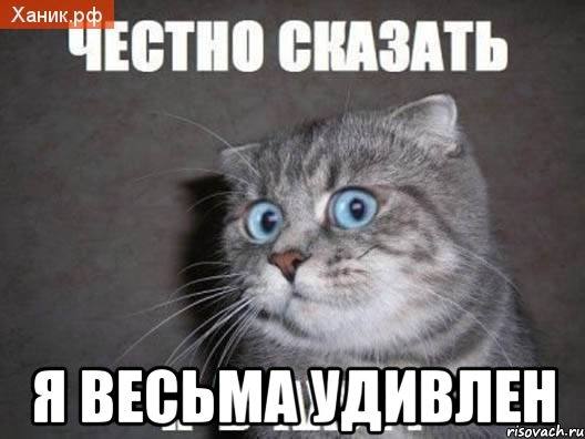 chestno-skazat-ya-v-ahue_24410866_orig_.