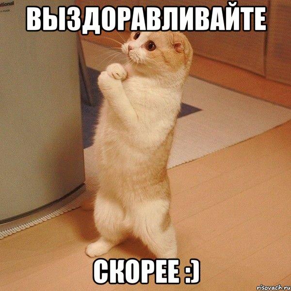http://risovach.ru/upload/2013/07/mem/kote_25285919_orig_.jpg