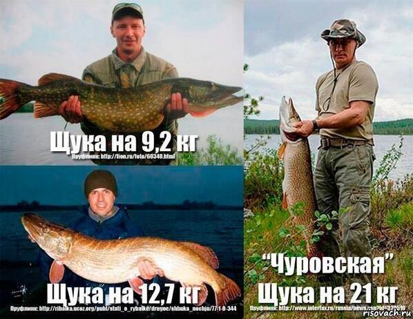 Путин и ловля щуки картинки путин