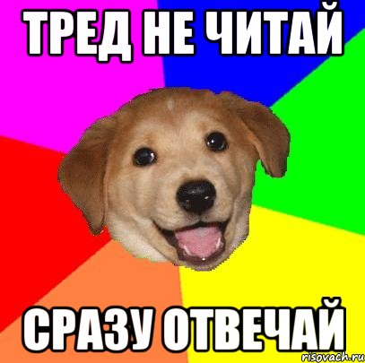 advice-dog_28326394_orig_.jpg