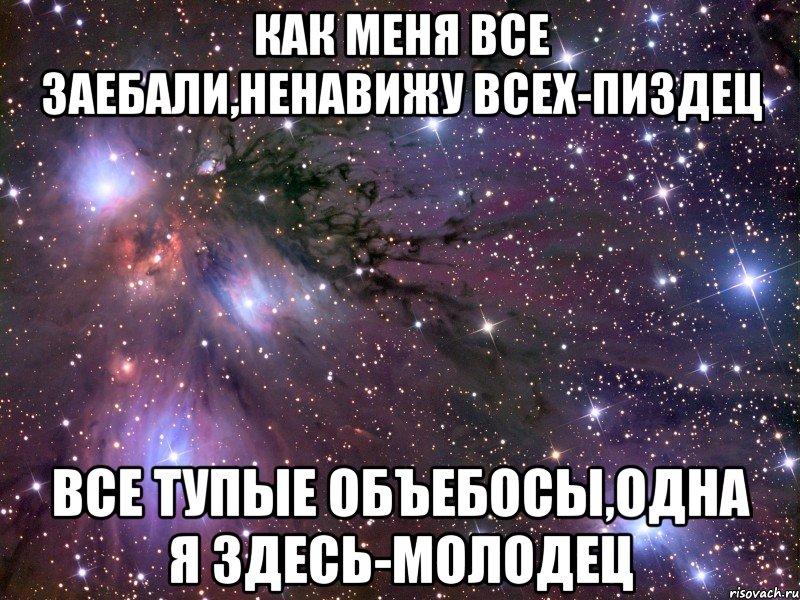 -жуки- все пиздец: