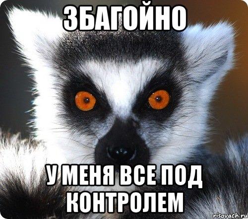 http://risovach.ru/upload/2013/08/mem/lemur_28229060_orig_.jpeg