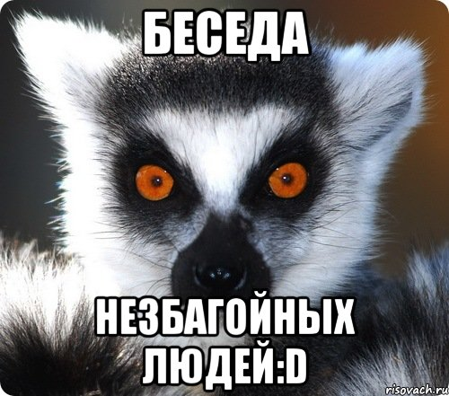 аренда квартир новосибирск авито