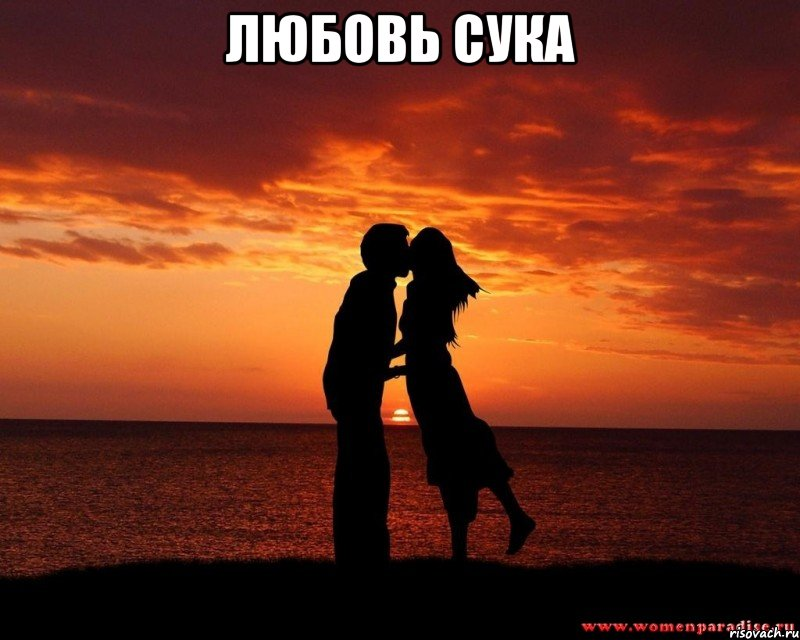 любовь к сучке