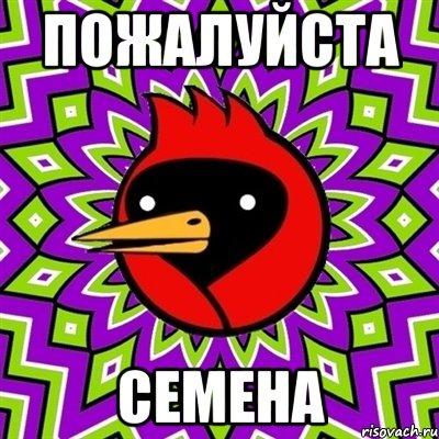 [Изображение: omskaya-ptica_25984211_orig_.jpg]