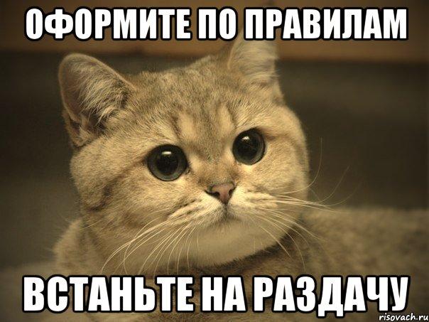 [Изображение: pidrila-ebanaya-kotik_25938413_orig_.jpeg]