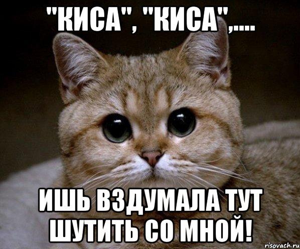 http://risovach.ru/upload/2013/08/mem/pidrila-ebanaya_26111857_orig_.jpeg