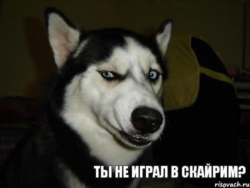 http://risovach.ru/upload/2013/08/mem/sobaka-podozrevaka_28127984_orig_.jpg