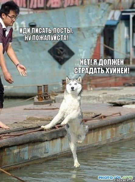 http://risovach.ru/upload/2013/08/mem/sobaka_26376053_orig_.jpeg