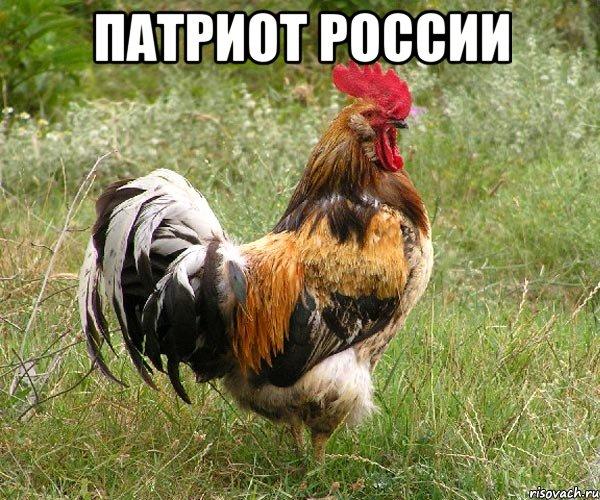 Патриот россии мем ттт